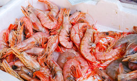 Raw prawns Stock Images