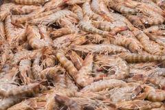 Raw prawns in the fish market Stock Photos