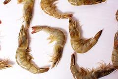 Raw prawns flat lay top view. Background shrimp shrimps nobody closeup single studio shellfish fresh detail healthy uncooked food cuisine ingredient meal stock photos