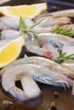 Raw prawns. Fresh  raw green prawns with ice  and spicies Royalty Free Stock Photo