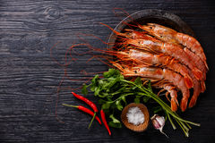 Raw Prawns on metal plate. Raw fresh Prawns on metal plate on black burned wooden background copy space Stock Photos