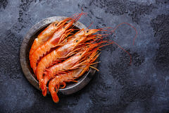 Raw Prawns on metal plate Stock Photography
