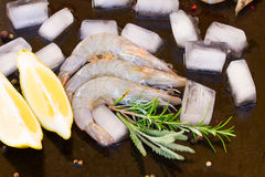 Raw prawns. Pile of   raw prawns with ice, lemon  and spicies Stock Photography