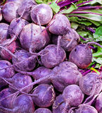 Raw purple beets Stock Images