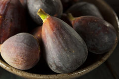 Raw Purple Organic Figs. On a Background Stock Images