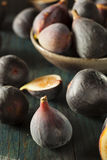 Raw Purple Organic Figs. On a Background Royalty Free Stock Photography