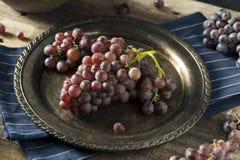 Raw Purple Organic Red Wine Grapes Royalty Free Stock Image