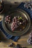 Raw Purple Organic Red Wine Grapes Royalty Free Stock Photo