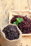 Raw purple rice berries and cooked of delicious for health. Royalty Free Stock Images
