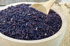 Raw purple Riceberry rice Royalty Free Stock Photos