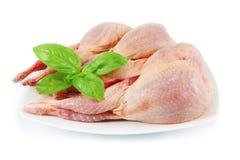 Raw quail. Fresh quail carcasses and basil Royalty Free Stock Photo