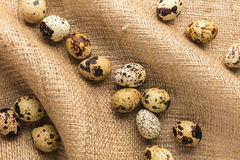 Raw quail eggs close-up. On a background of burlap Stock Photo