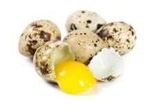 Raw quail eggs. Isolated on white background Stock Photos