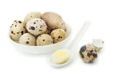 Raw quail eggs in a plate. And a boiled egg in a white spoon on a white background isolated in a white spoon on a white background isolated Stock Images