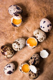 Raw quail eggs on the wooden background. With some open eggs Stock Photos