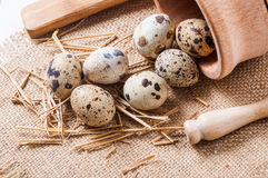 Raw quail eggs in a wooden bowl on burlap background. Raw quail eggs in a wooden bowl on a burlap background Stock Photography