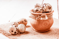 Raw quail eggs in a wooden bowl on burlap background Stock Image