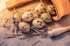 Raw quail eggs in a wooden bowl on burlap background. Raw quail eggs in a wooden bowl on a burlap background Royalty Free Stock Photos