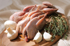 Raw quail with ingredients royalty free stock photography