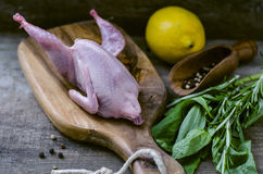 Raw quail on a wooden board and spices. Raw fresh quail on a wooden board and spices Stock Image
