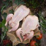Raw quails Royalty Free Stock Image