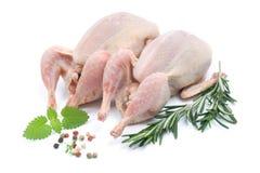 Raw quails Royalty Free Stock Photo