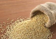Raw Quinoa Stock Image