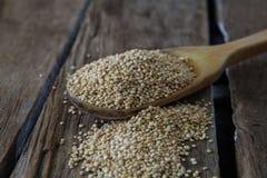 Raw quinoa seeds Royalty Free Stock Image