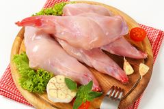 Raw rabbit meat. Fresh rabbit meat on cutting board Stock Photo