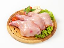Raw rabbit meat. Fresh rabbit meat on cutting board Stock Image
