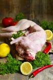 Raw rabbit. Stock Photos