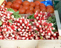 Raw radish in a box on the market. Raw radish in a box on the french market Stock Images