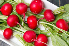 Raw radishes with leaves in a bowl Stock Photo