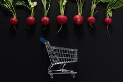 Raw radishes and shopping cart. On a black background Royalty Free Stock Photography
