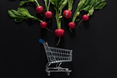 Raw radishes and shopping cart. On a black background Stock Photo