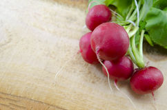 Raw radishes on a wooden board. Fresh natural radishes on a wooden board Royalty Free Stock Image