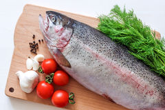Raw rainbow trout on a cutting board with vegetables and spices.  Stock Image