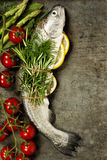 Raw rainbow trout with lemon, herbs and spice. On rustic background Royalty Free Stock Images