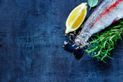 Raw rainbow trout. Tail of fresh raw rainbow trout on black slate stone board with spices, herbs, lemon and salt, preparation. Top view of fish food background Royalty Free Stock Image