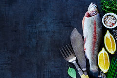 Raw rainbow trout. Top view of fish food background with raw uncooked rainbow trout, lemon, herbs and spices over dark vintage table, preparation, space for text Stock Photography