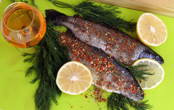 Raw rainbow trout. Two rainbow trouts with lemon, apple juice and dill ready to cook stock photography