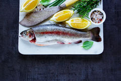 Raw rainbow trout. Raw uncooked rainbow trout on marble board with lemon, herbs and spices over dark rustic table, preparation. Top view of fish food background Stock Images