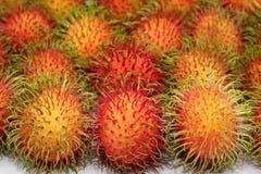 Raw of rambutan fruits. Close up of rambutan fruits royalty free stock image