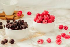 Raw raspberries and wild black, blackberries in white cups. Light marble background. Summer fruit, berries. Detox diets and. Healthy food concept stock photography