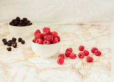Raw raspberries and wild black, blackberries in white cups. Light marble background. Place for text. Detox diets and healthy food. Concept stock photography