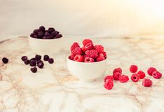Raw raspberries and wild black, blackberries in white cups. Light marble background. Place for text. Detox diets and healthy food. Concept.Toning royalty free stock photography