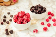 Raw raspberries and wild black, blackberries in white cups. Light marble background. Summer fruit, berries. Detox diets and. Healthy food concept royalty free stock images