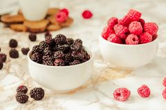 Raw raspberries and wild black, blackberries in white cups. Light marble background. Summer fruit, berries. Detox diets and. Healthy food concept royalty free stock photos