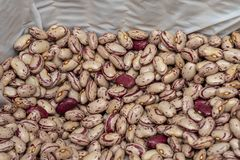 Raw red beans in bulk. Sale of legumes stock image