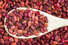 Raw red beans and a wooden spoon Stock Photos